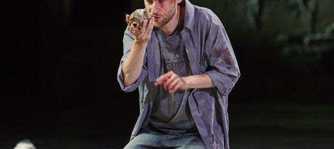 Hamlet: Who's there? på Kronborg