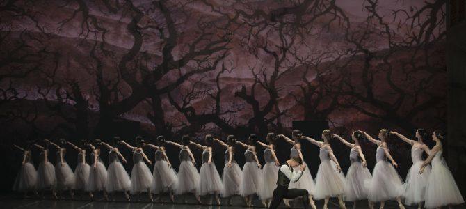 Giselle – Ballethistoriens nr.1. Den Kongelige Ballet.
