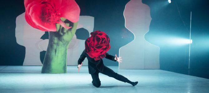 Nattergalen hos Dansk Danseteater